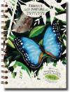 Blue Morpha Butterfly Tree Free Paper Journal