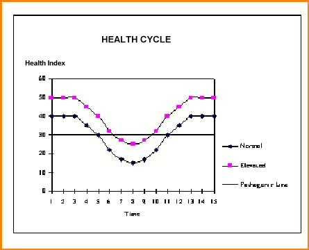 Health Cycle of Typical Person
