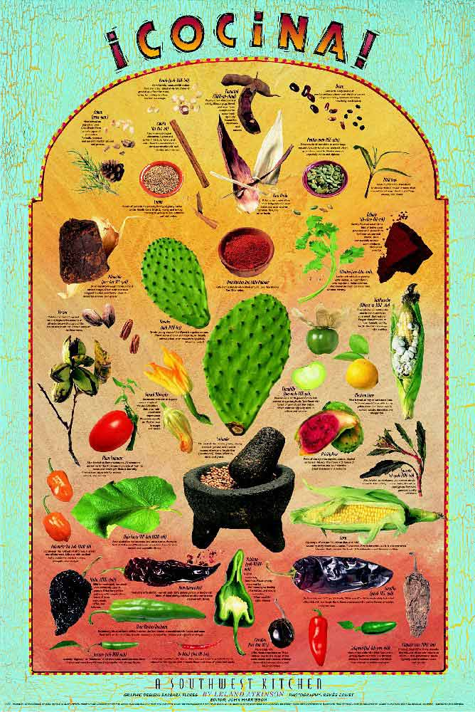 Subtropical fruit exotic tropical fruit exotic fruit posters set