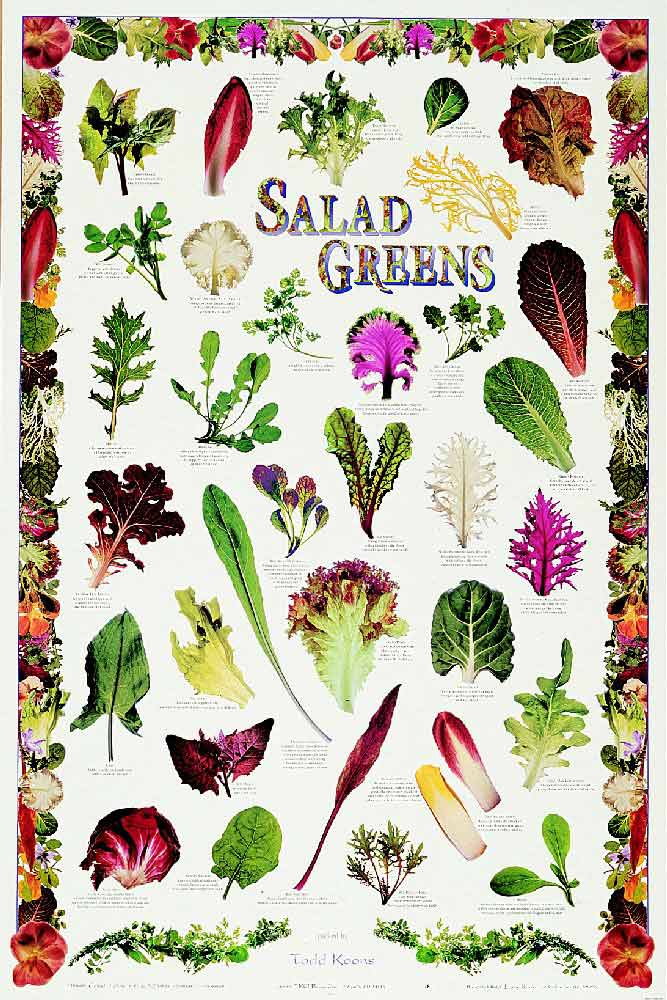 images How to Choose the Healthiest Salad Greens